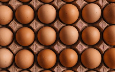 Poultry: do not put all the eggs in the same basket!